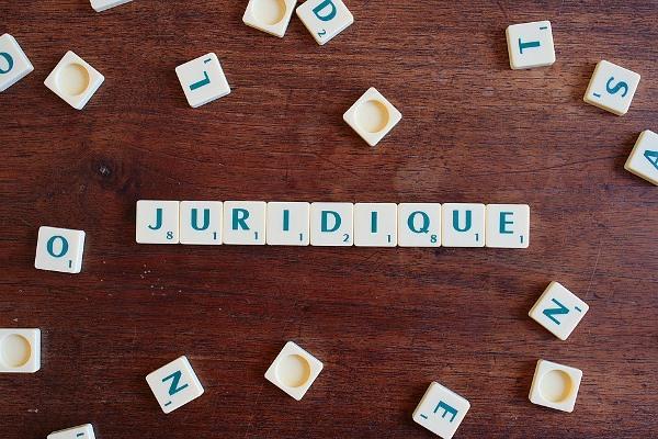 La Veille Juridique Du 13 Novembre 2018
